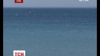 У Чорному морі можливо завелась тигрова акула(UA - У Чорному морі можливо завелась тигрова акула. Поблизу Тарханкуту мандрівники знайшли щось схоже на..., 2013-10-21T06:29:25.000Z)