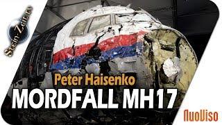 Mordfall MH17 - Hinweise auf die Täter - Peter Haisenko bei SteinZeit