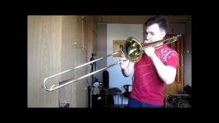 Startone trombone/puzon review