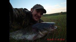 Ловля сома на малой реке