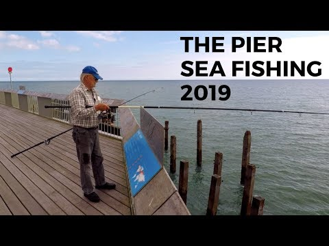 Sea Fishing -The Pier Sept 2019