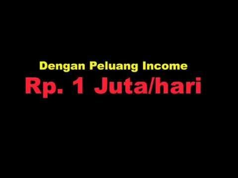 Peluang Bisnis Rumahan 2013 Modal Kecil Yang Menguntungkan ...