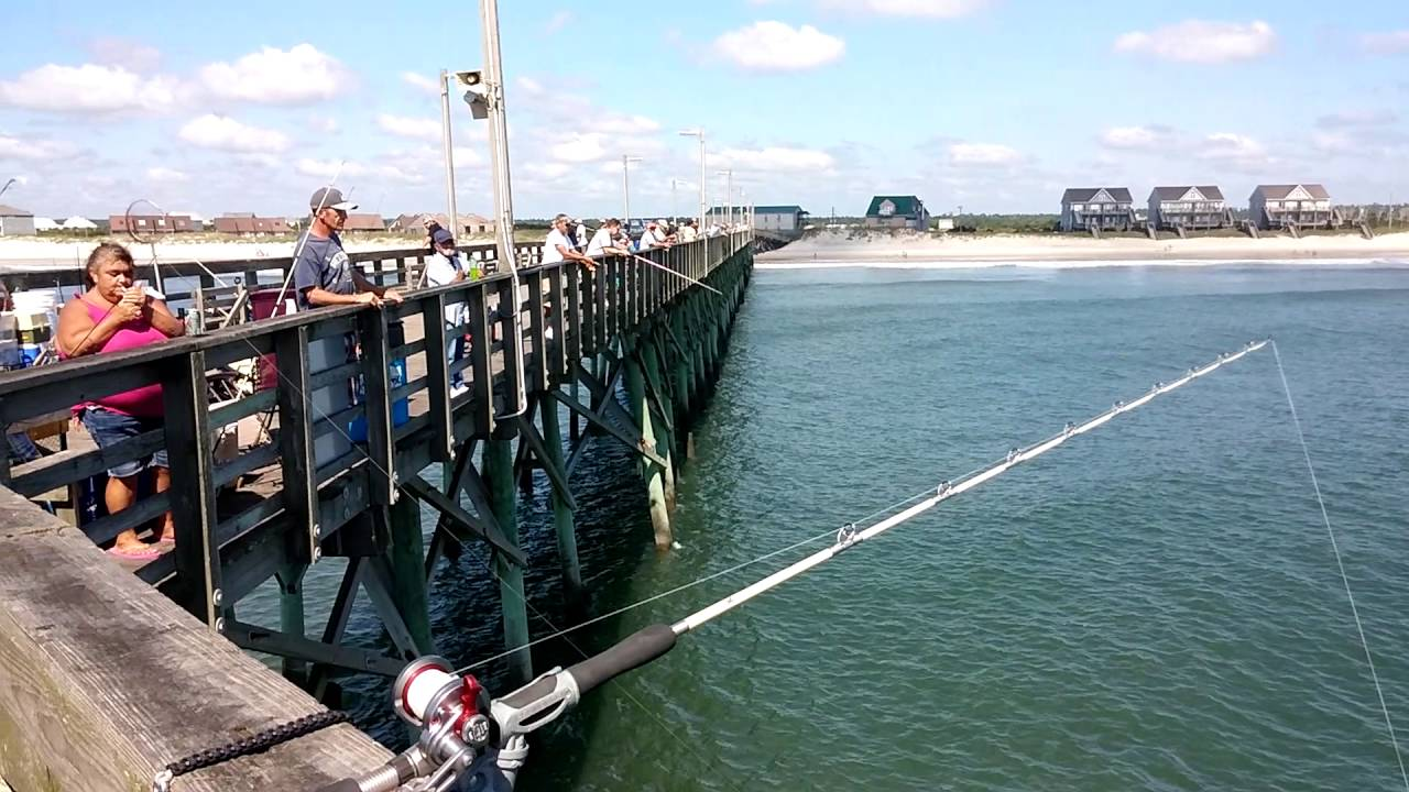 9 24 16 seaview fishing pier report on north topsail for Seaview fishing pier
