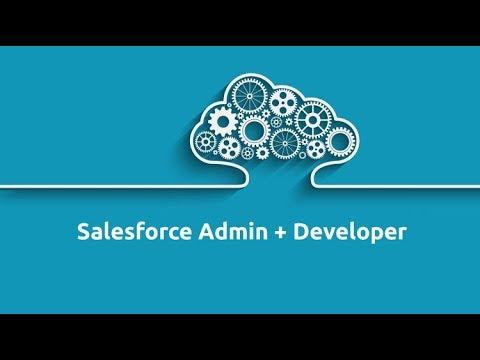 Free Salesforce Admin & Developer training: Pass your Admin 201 ...