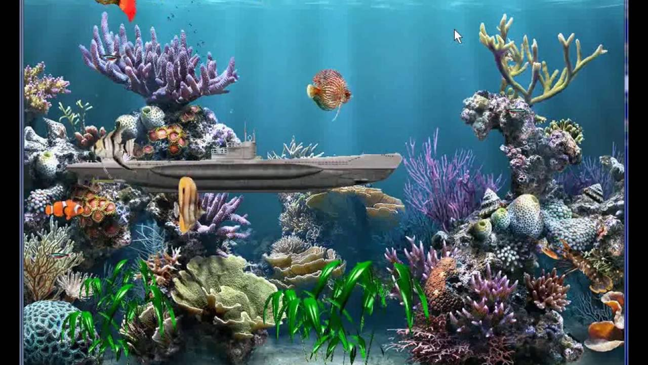 photo about Fish Tank Background Printable referred to as printable aquarium backgrounds absolutely free - Sinma