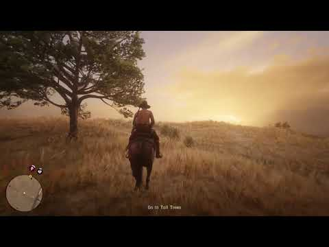 First Mission and Treasure Map in Red Dead Redemption 2 Online