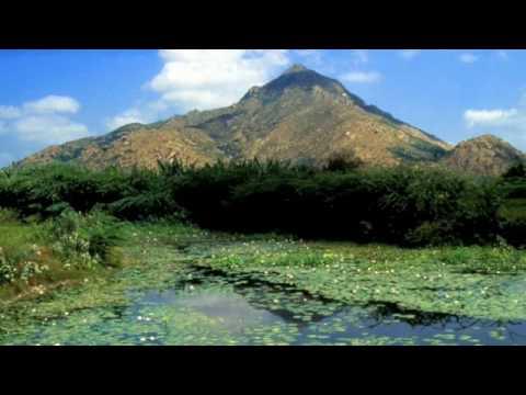 nithyasree mahadevan - thiruppavai - track  23 - 24 - 25 - 26