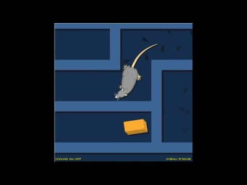Funny Rat Cheese Game - Y8.com Best Online Games by Pakang