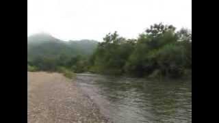 Река Амба 9-10-08-2013