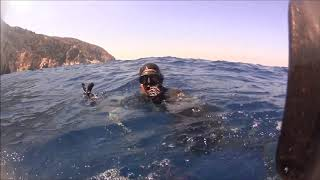 ''Never dive alone'' and Goldblotch grouper..#Samos