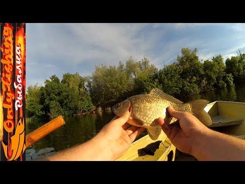 Fish Bait рулит! Ловля карася окуня щуки на силиконовые приманки на реке Конка летом