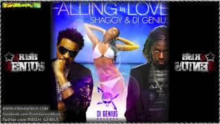 Shaggy & Di Genius - Falling In Love - July 2012