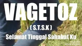 [1.39 MB] VAGETOZ selamat tinggal shabatku (videoklipVAGETISTA)