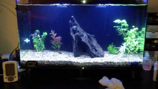 can you cycle a planted fresh water tank with a uv filter running week 1