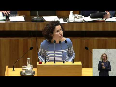 14 Nationalratssondersitzung 2 Alev Korun Grüne 2015 05 04 1500 tl 06 Politik LIVE Alev Korun