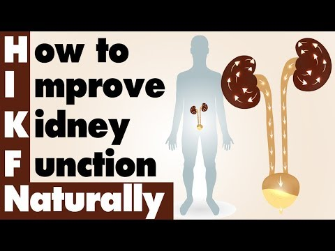 how-to-improve-kidney-function-naturally-|-ayurvedic-kidney-experience