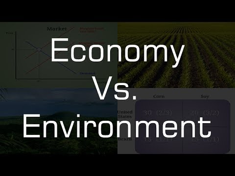 How are the economy and the environment related? (APES final project)