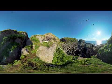 Кино 360. Кандалакшский заповедник