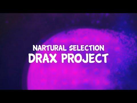 Drax Lyrics