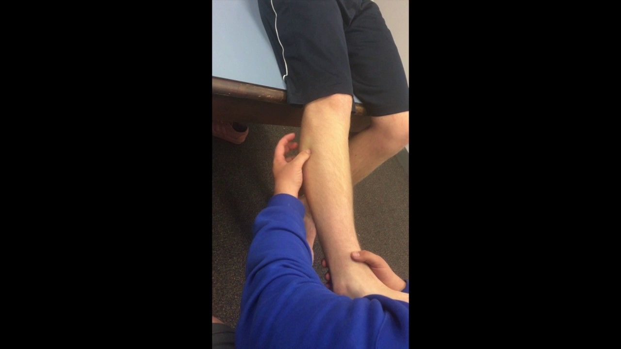 Soft Tissue Anatomy of the Lower Leg:Ankle - YouTube