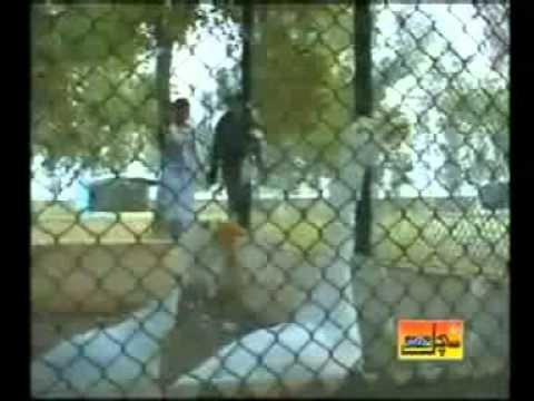 FARZANA PARVEEN - DIL GHURAN LA KEDA PANDH KAI PAY - Sindhi Song.mpg