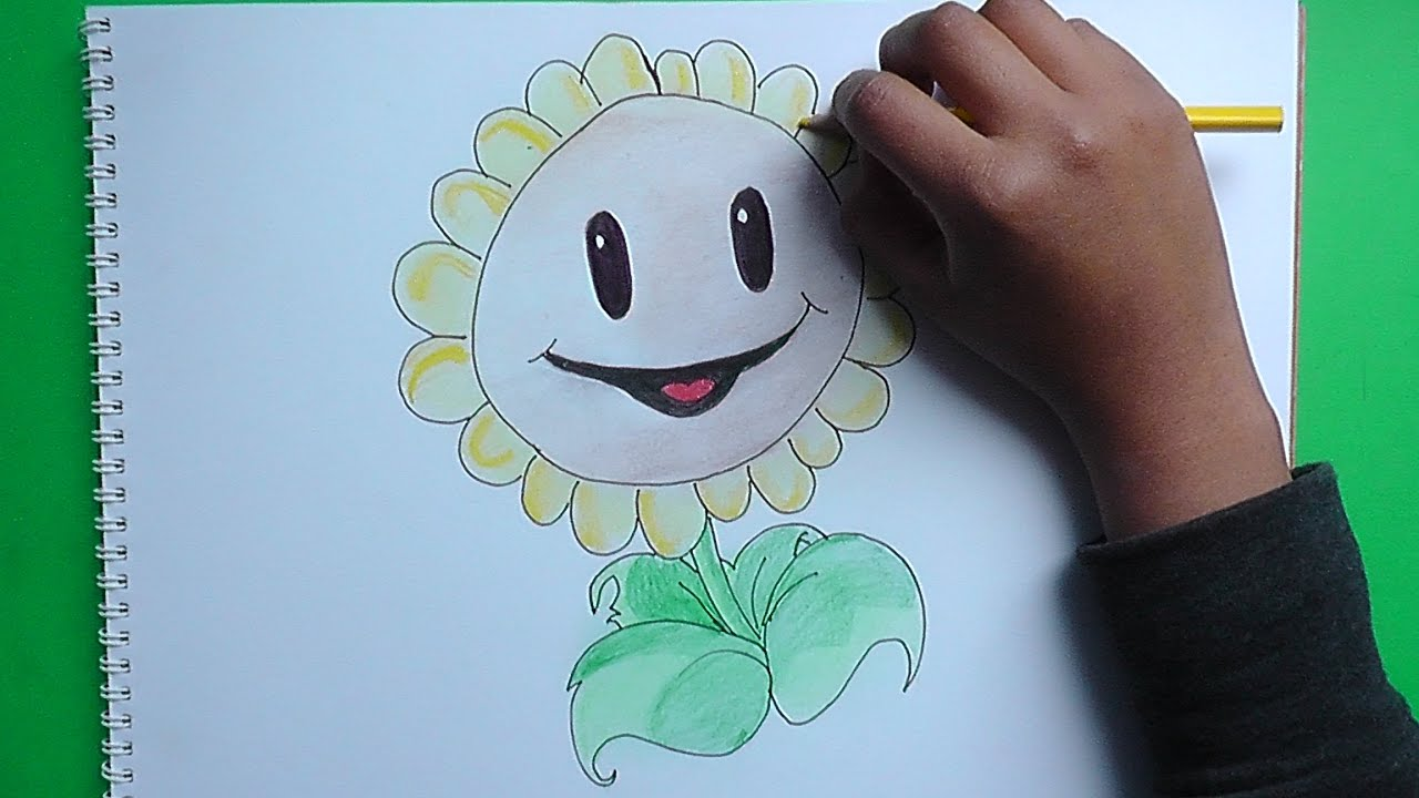 Como dibujar al Girasol Plantas vs Zombies  How to draw the