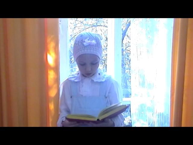 Изображение предпросмотра прочтения – МарияЧубенко читает произведение «Земле» В.Я.Брюсова