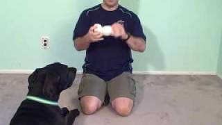 Eliminate Neck and Shoulder pain FAST..with a tennis ball!!