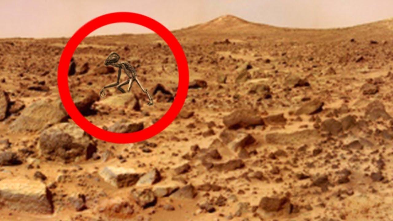 NASA Covers Up ALIEN Life On Mars - YouTube