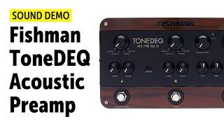 Fishman ToneDEQ Acoustic Preamp - Sound Demo (no talking)