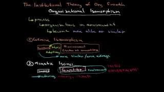 Organizational Isomorphism