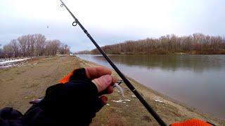 Ловля окуня на отводной поводок. Рыбалка на теплом канале.