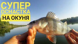 Рыбалка на окуня Сутки на Дону Такого вы не видели