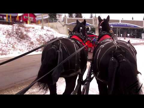 Horse drawn sleigh ride -  Silver Star Mountain Resort -  British Columbia, Canada -  YouTube