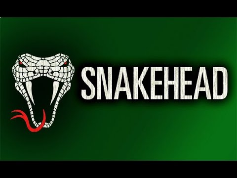 Snakehead Summary & Study Guide