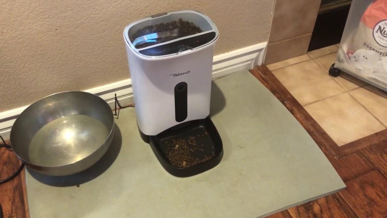 pet smart animal product houz feeder