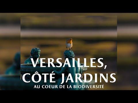 Versailles, côté jardins -