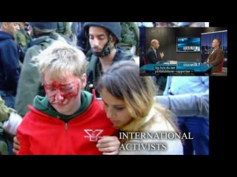 Norman Finkelstein International Law and War Crimes Israel / Palestine