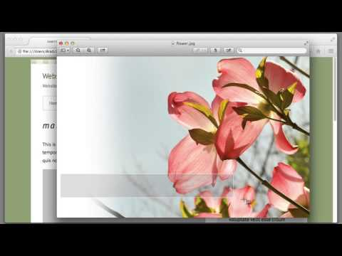 CSS Background Image Tutorial: Lecture 37, Web Design for Beginners Course