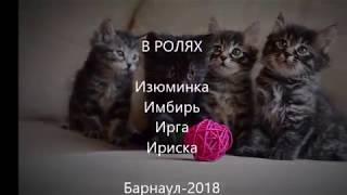Продажа котят курильского бобтейла (2 мес.)