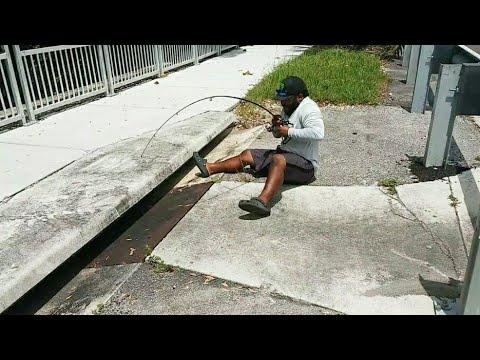 SEWER Fishing For Big Fish!