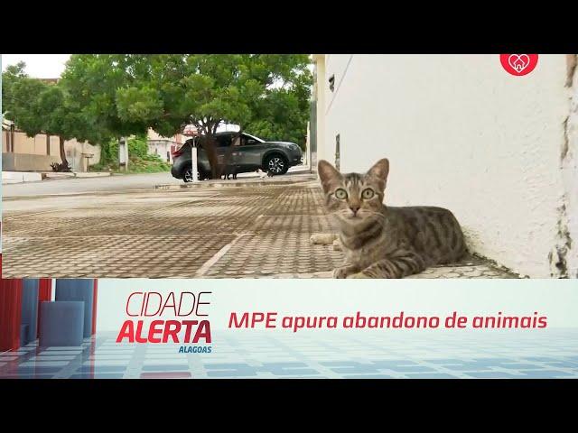 MPE apura abandono de animais em bairros afetados pela mineração