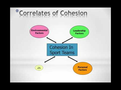 Ch 8 Group Cohesion