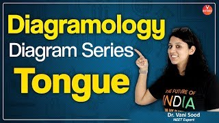 Human Tongue Diagram | Structure Of The Tongue | Functions Of The Tongue | NEET 2020 |  | VBiotonic