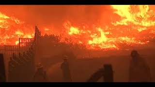 Feuerhölle in Kalifornien: Viele Tote und Vermisste