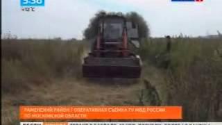 Полицейскими уничтожены дикорастущие наркотические растения