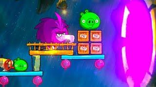 Angry Birds 2 BOSS ZETA (King Pig Panic) Gameplay Walkthrough Part 685