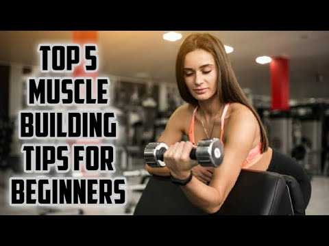 TOP 5 MUSCLE BUILDING TIPS FOR BEGINNERS.