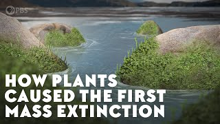 How Plants Caused the First Mass Extinction