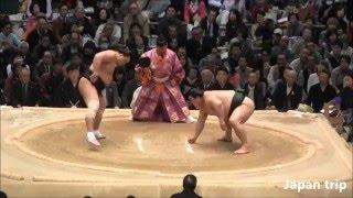 日馬富士 vs 隠岐の海の取組。2016大相撲春場所2日目。
